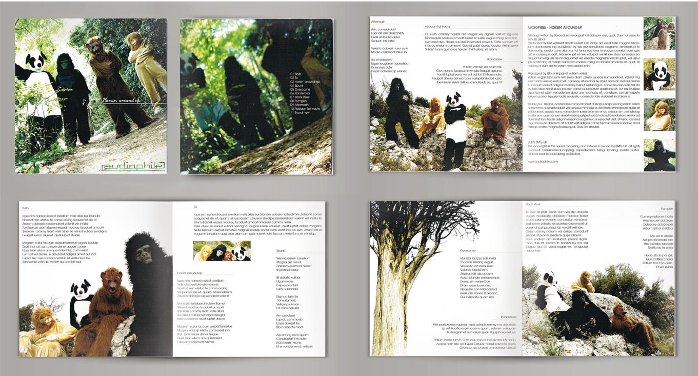 planche-cd-audiophile2