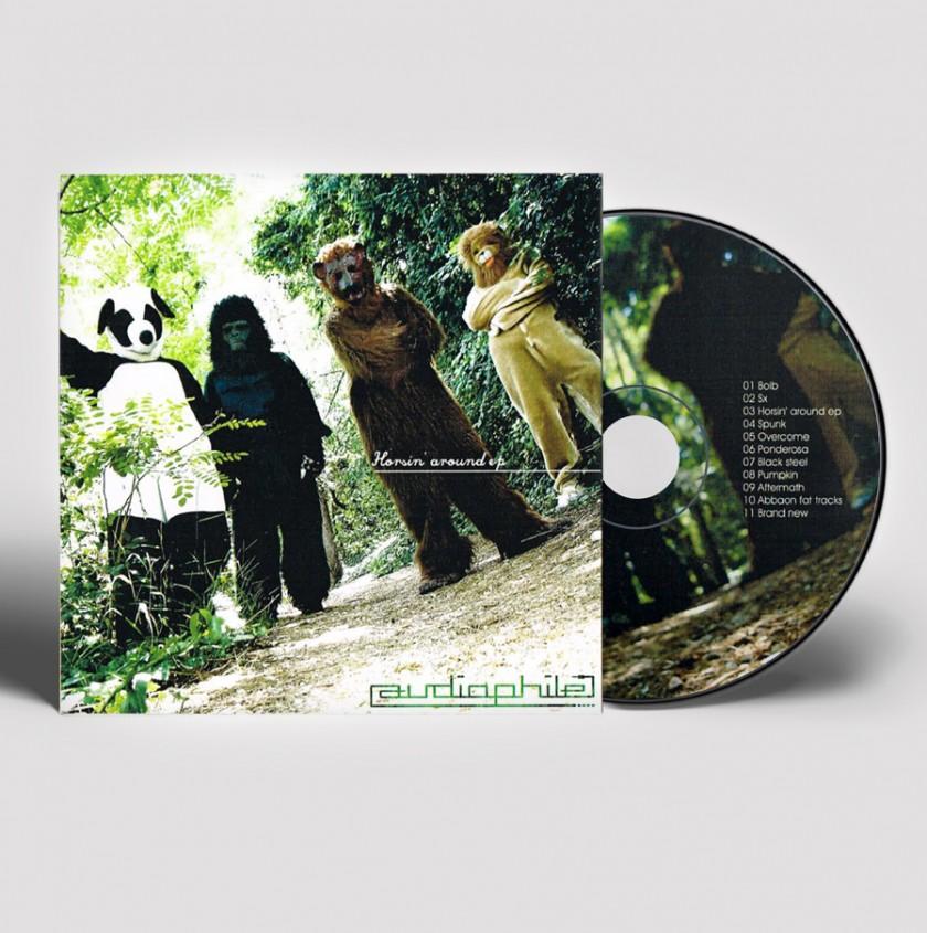 Audiophile, pochette, cd, animaux, costume, déguisements animaux, foret, musique, groupe, album, panda, gorille, ours, lion